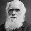 perso-darwin